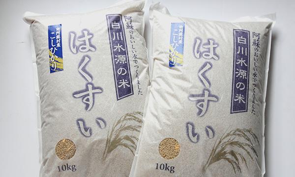白川水源のお米 はくすい米(こしひかり)